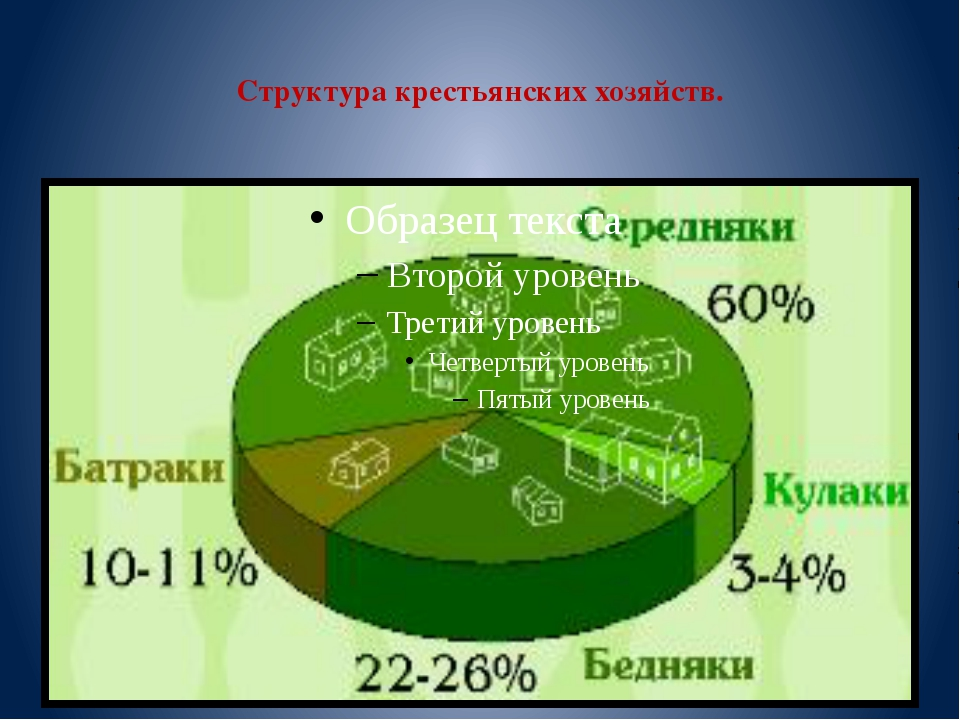Структура крестьянских хозяйств.