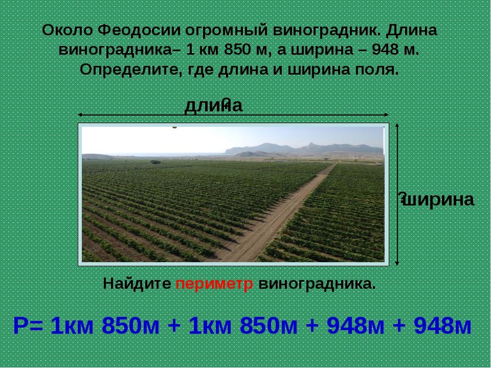 Около Феодосии огромный виноградник. Длина виноградника– 1 км 850 м, а ширина...