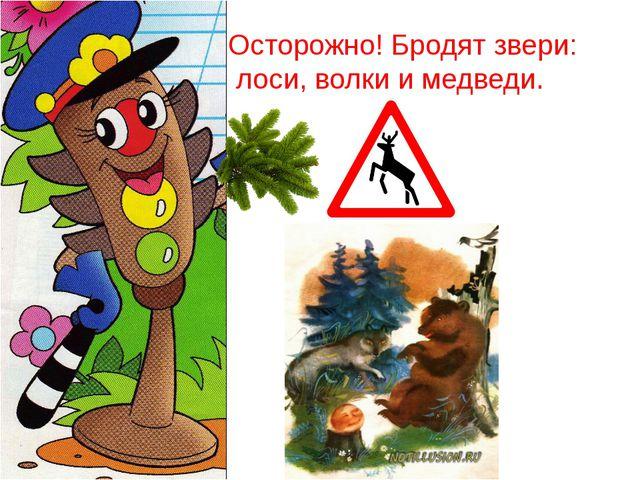 Осторожно! Бродят звери: лоси, волки и медведи.