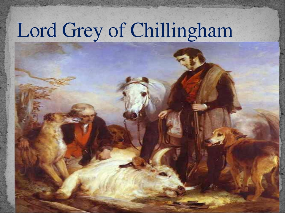 Lord Grey of Chillingham