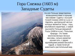 Гора Снежка (1603 м) Западные Судеты На юге Польша представлена возвышенностя
