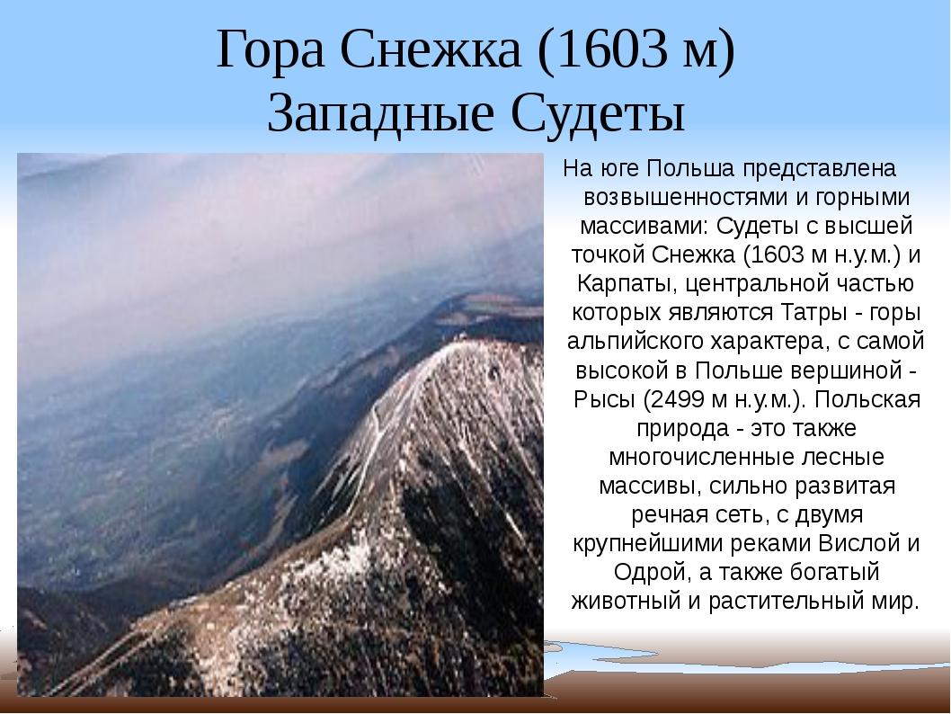 Гора Снежка (1603 м) Западные Судеты На юге Польша представлена возвышенностя...