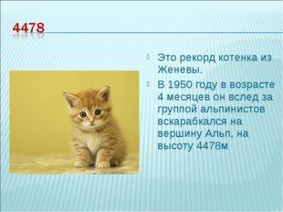 Это рекорд котенка из Женевы. В 1950 году в возрасте 4 месяцев он вслед за гр