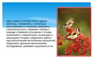 Цель: усвоить отличие птиц от других животных, познакомить с их жизнью, разн