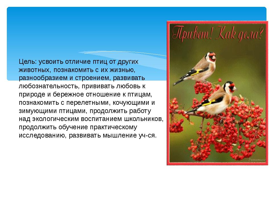 Цель: усвоить отличие птиц от других животных, познакомить с их жизнью, разн...