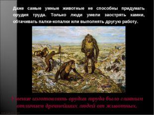 © Жадаев Д.Н., 2005 Даже самые умные животные не способны придумать орудия тр