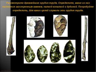 © Жадаев Д.Н., 2005 Рассмотрите древнейшие орудия труда. Определите, какие из