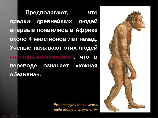 © Жадаев Д.Н., 2005 Предполагают, что предки древнейших людей впервые появил...