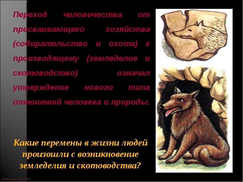 © Жадаев Д.Н., 2005 Переход человечества от присваивающего хозяйства (собират...