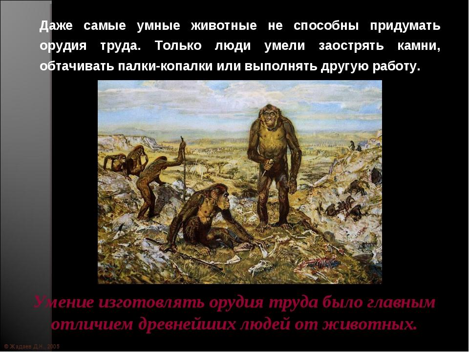 © Жадаев Д.Н., 2005 Даже самые умные животные не способны придумать орудия тр...