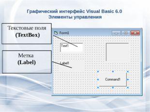 Графический интерфейс Visual Basic 6.0 Элементы управления Текстовые поля (Te