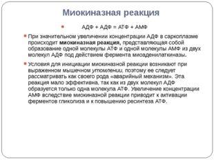 Миокиназная реакция АДФ + АДФ = АТФ + АМФ При значительном увеличении концент