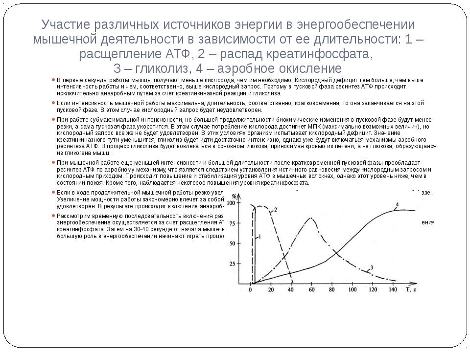 Участие различных источников энергии в энергообеспечении мышечной деятельност...