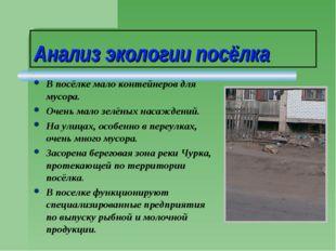 Анализ экологии посёлка В посёлке мало контейнеров для мусора. Очень мало зел