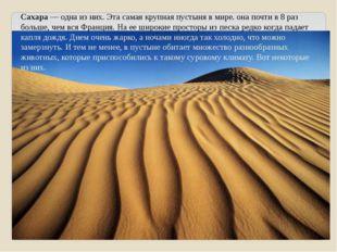 Сахара — одна из них. Эта самая крупная пустыня в мире. она почти в 8 раз бол