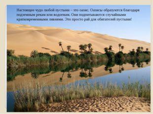 Настоящее чудо любой пустыни – это оазис. Оазисы образуются благодаря подземн