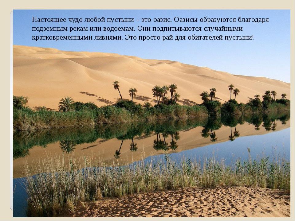 Настоящее чудо любой пустыни – это оазис. Оазисы образуются благодаря подземн...