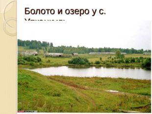 Болото и озеро у с. Упканкуль