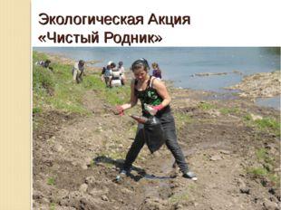 Экологическая Акция «Чистый Родник»