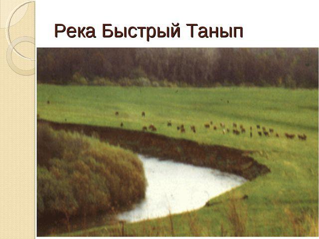 Река Быстрый Танып