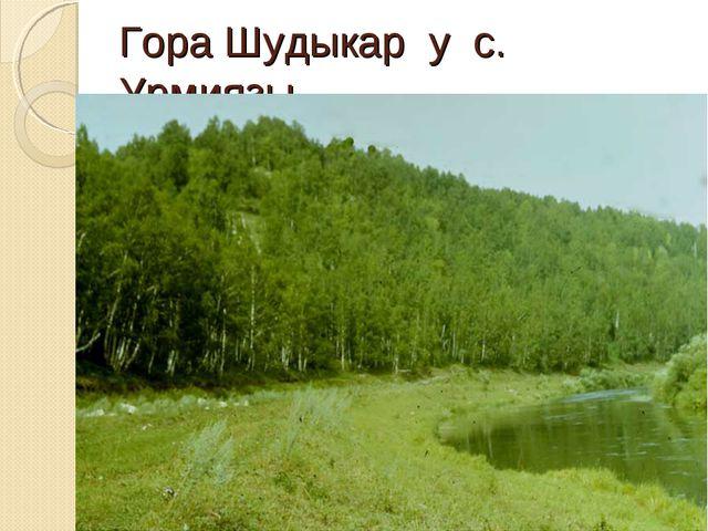 Гора Шудыкар у с. Урмиязы