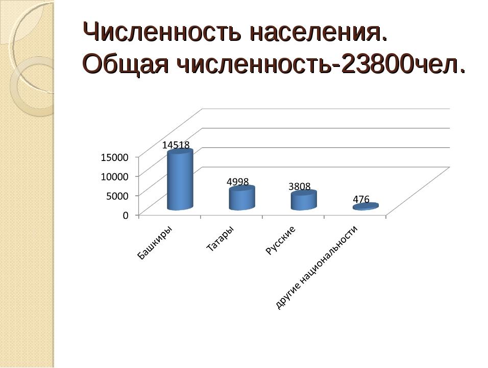 Численность населения. Общая численность-23800чел.