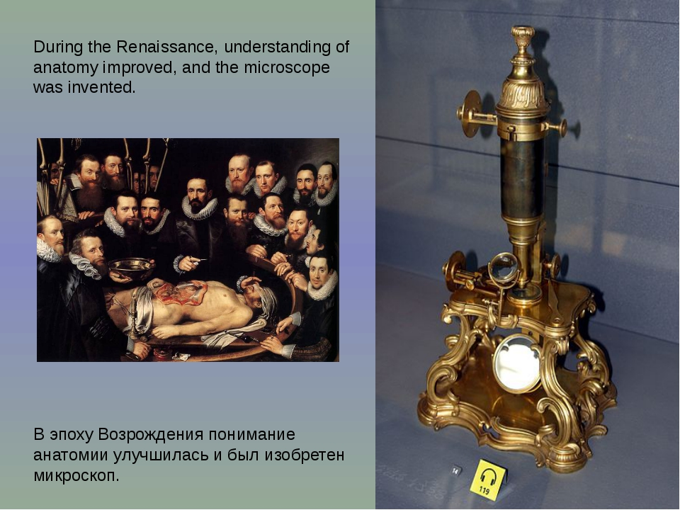 During the Renaissance, understanding of anatomy improved, and the microscope...