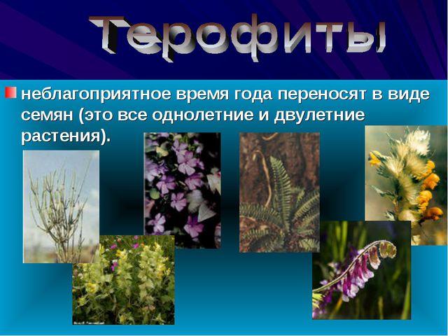 неблагоприятное время года переносят в виде семян (это все однолетние и двул...