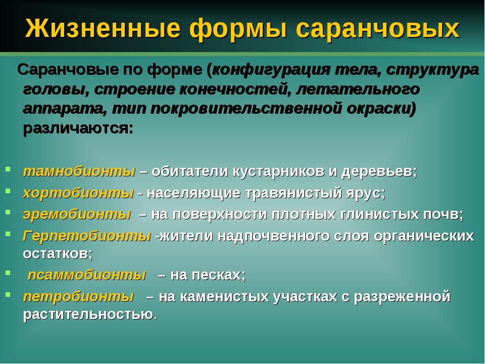 Жизненные формы саранчовых Саранчовые по форме (конфигурация тела, структура...