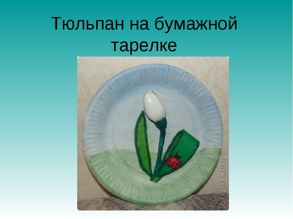 Тюльпан на бумажной тарелке