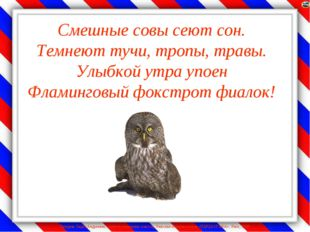 Смешные совы сеют сон. Темнеют тучи, тропы, травы. Улыбкой утра упоен Фламинг