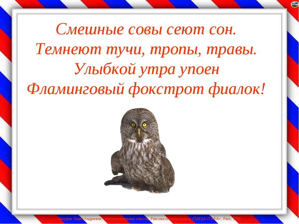 Смешные совы сеют сон. Темнеют тучи, тропы, травы. Улыбкой утра упоен Фламинг...