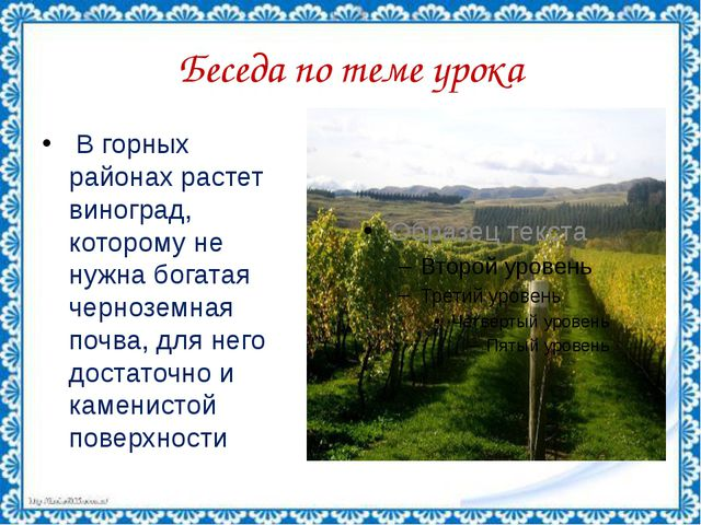 Беседа по теме урока В горных районах растет виноград, которому не нужна бога...