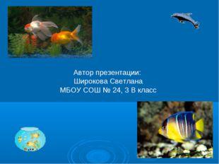 Автор презентации: Широкова Светлана МБОУ СОШ № 24, 3 В класс