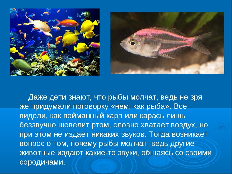 Даже дети знают, что рыбы молчат, ведь не зря же придумали поговорку «нем, к...