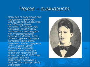 Чехов – гимназист. Семи лет от роду Чехов был определен в греческую школу, гд