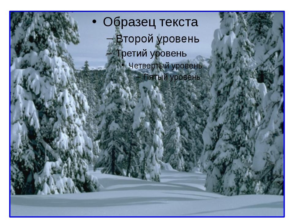 текст тема ознакомление сявлениями зимней природы
