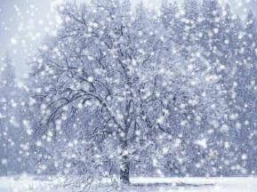 http://mmcentr.ru/blog/uploads/forex/snowfall.jpg