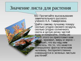 Значение листа для растения №1 Прочитайте высказывание замечательного русског