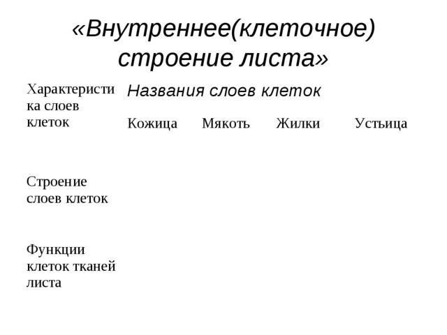 «Внутреннее(клеточное) строение листа» Характеристика слоев клетокНазвания с...