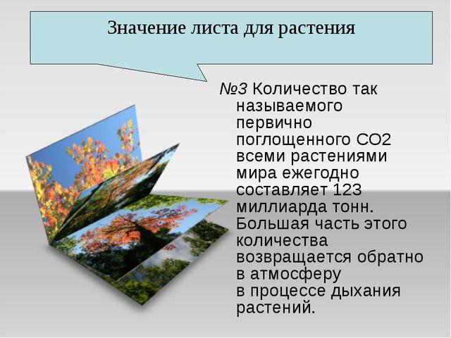 №3 Количество так называемого первично поглощенного СО2 всеми растениями мира...