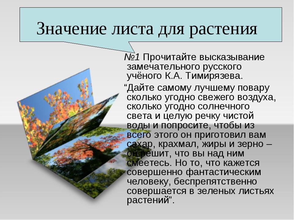 Значение листа для растения №1 Прочитайте высказывание замечательного русског...