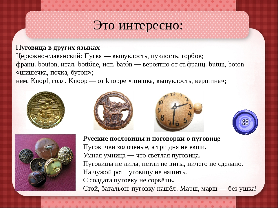 Это интересно: Пуговица в других языках Церковно-славянский: Пугва — выпуклос...