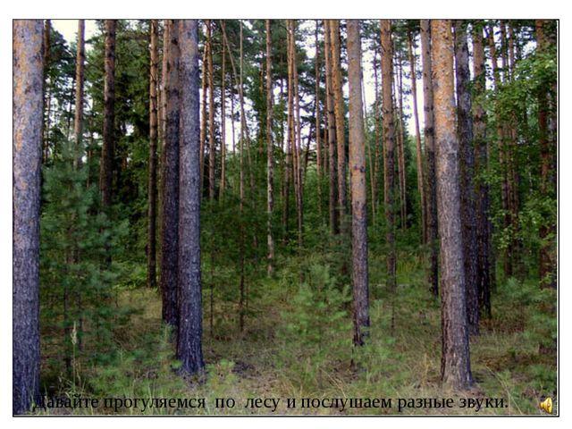 Давайте прогуляемся по лесу и послушаем разные звуки.