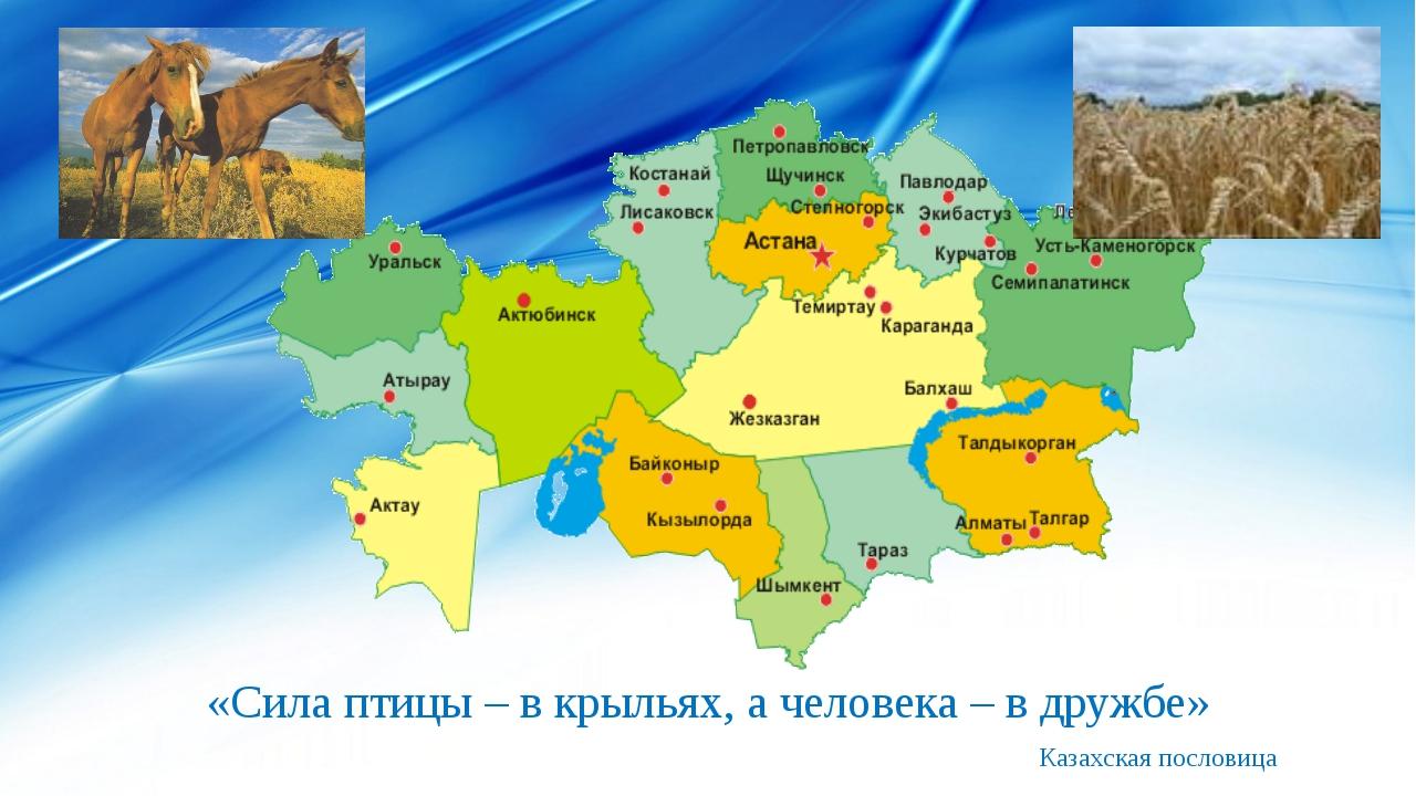 «Сила птицы – в крыльях, а человека – в дружбе» Казахская пословица