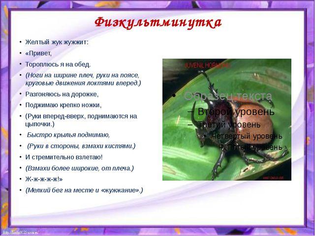 Физкультминутка Желтый жук жужжит: «Привет, Тороплюсь я на обед. (Ноги на шир...