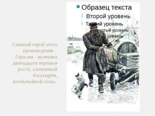 Главный герой этого произведения - Герасим - мужчина двенадцати вершков роста