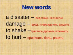 New words a disaster – бедствие, несчастье damage – вред, повреждение, вредит