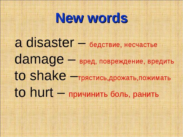 New words a disaster – бедствие, несчастье damage – вред, повреждение, вредит...