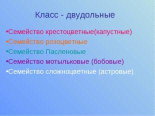 Класс - двудольные Семейство крестоцветные(капустные) Семейство розоцветные С